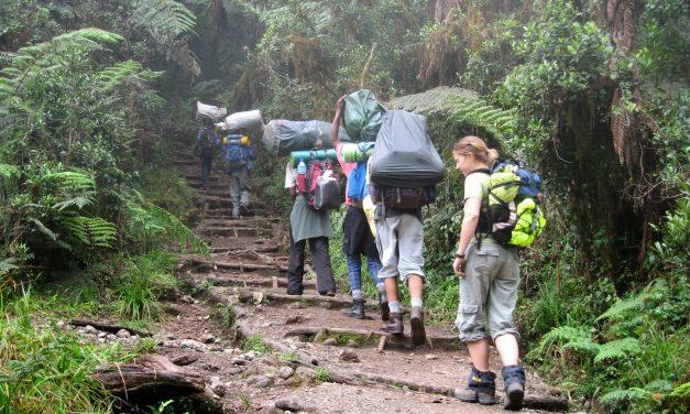7 Days Climb  Kilimanjaro Western Breach Umbwe Route
