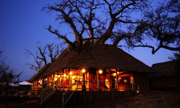 Treetop Tented Camp Tarangire
