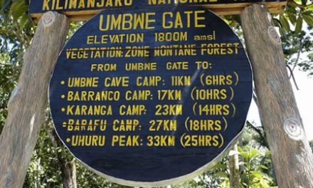 The Umbwe Route