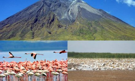 Best Time To Visit Lake Natron