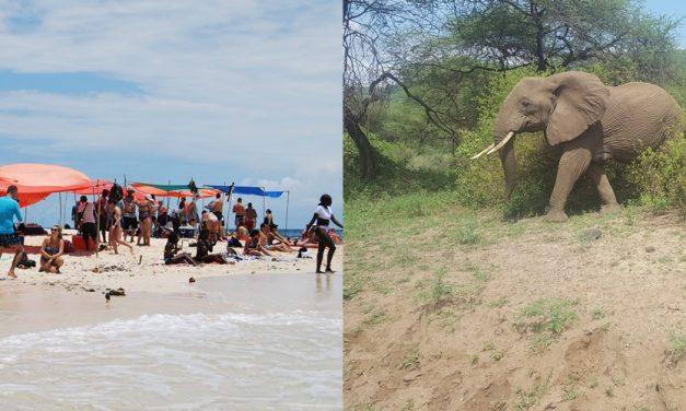 3 Days Safari and 3 Days Zanzibar